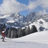 11 Skirennen 361