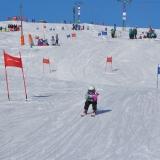 11 Skirennen 392