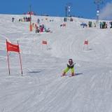 11 Skirennen 398