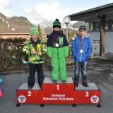 11 Skirennen 431